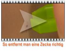 Video Zeckenentfernung
